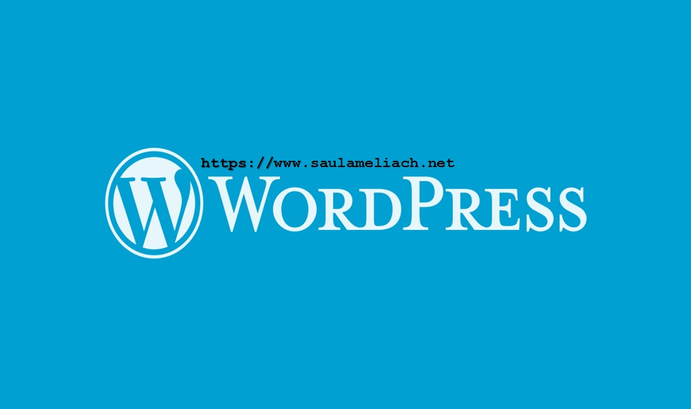 saul ameliach - wordpress