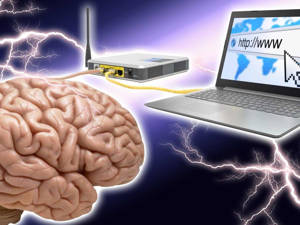 saul ameliach - cerebro