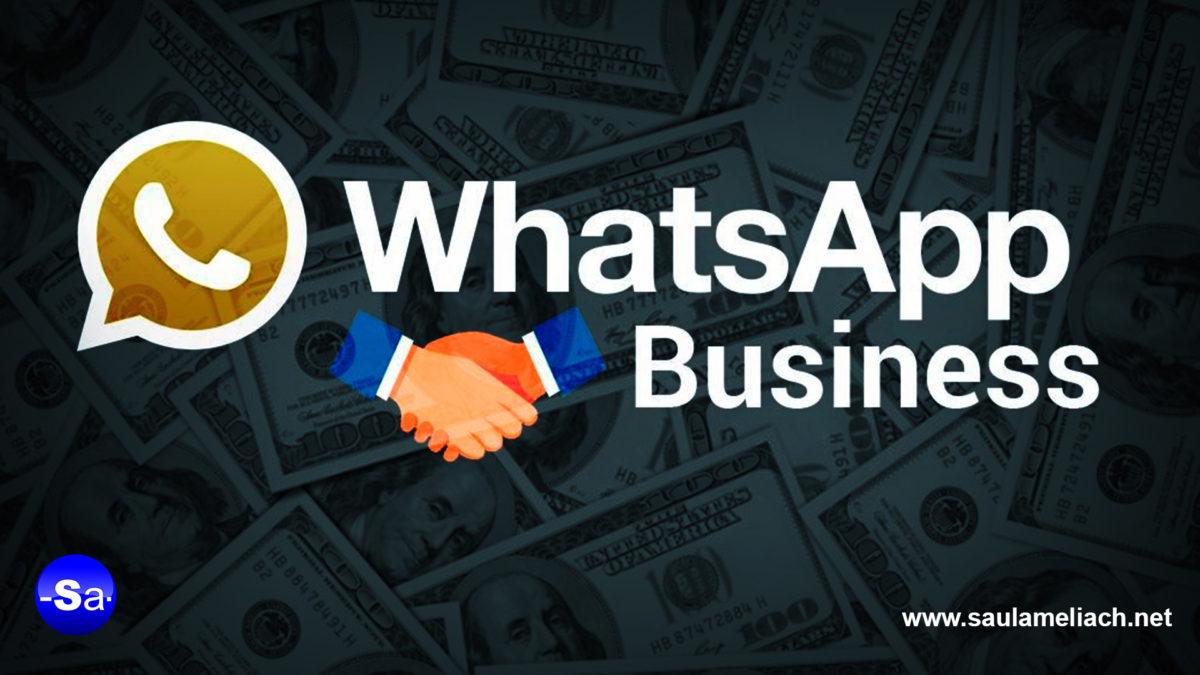 saul ameliach - WhatsApp Business, pasa a ser de pago a partir de ahora