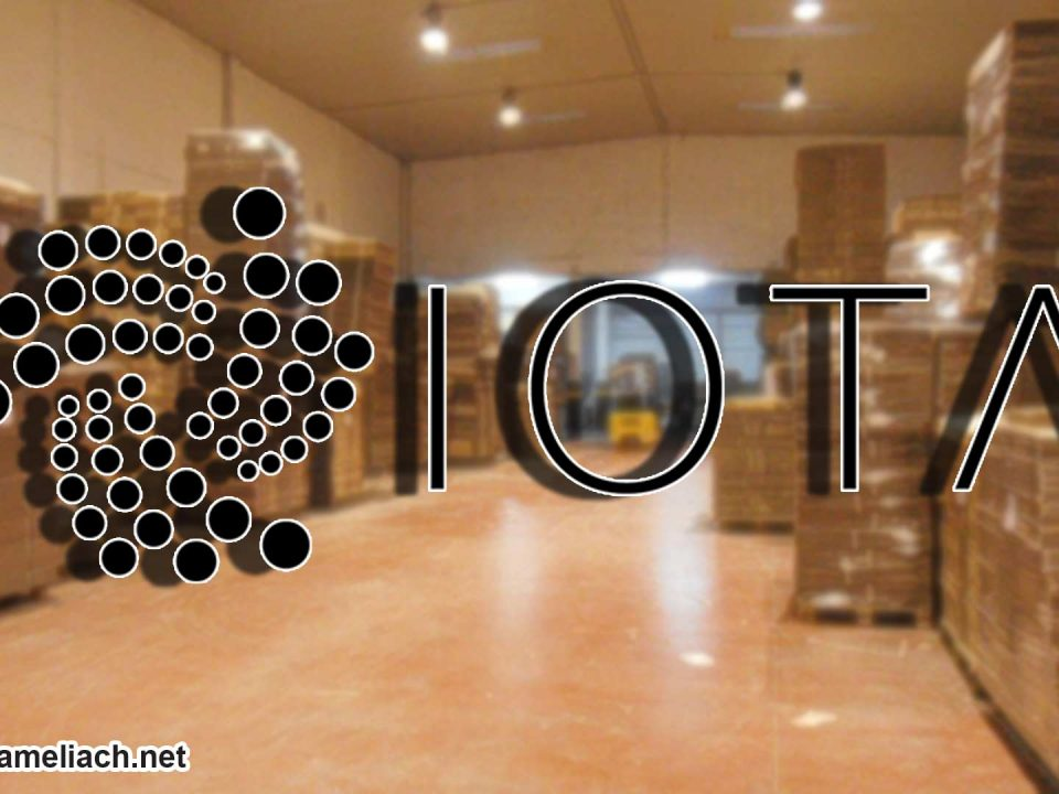 Empaquetamiento-inteligente-con-IOTA-Saul-Ameliach